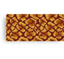 Snake Skins Canvas Print