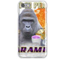 I FEEL LIKE HARAMBE  iPhone Case/Skin