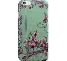 Arizona Ice tea iPhone Case/Skin