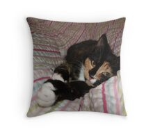 All you need is Tortitude Throw Pillow