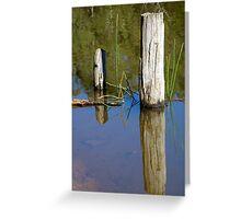 Brogo Dam Pylons Greeting Card