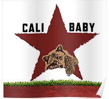 California Baby Poster