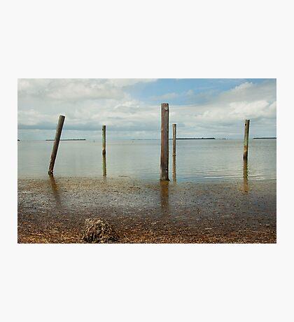 Along Pine Island Sound  Photographic Print