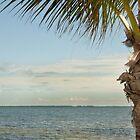 Tropical Getaway  by John  Kapusta