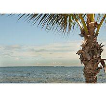 Tropical Getaway  Photographic Print