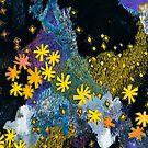 Hanabi #1 - Fireworks by Kris Keogh