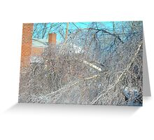 Ice storm Valentine's Day 2007 Greeting Card