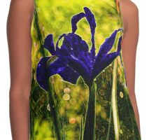 Iris named Lilley Contrast Tank
