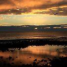 Burleigh Heads Sunrise by Noel Elliot
