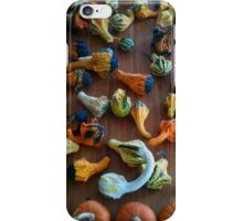 Hoards of Gourds iPhone Case/Skin