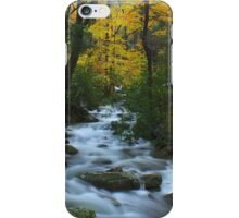 Cascades on the Motor Nature Trail iPhone Case/Skin