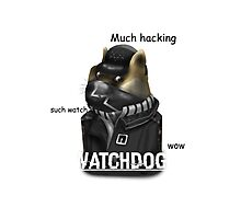 Watchdoge Photographic Print