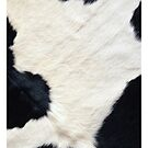 Cow fur by sermi