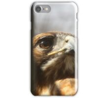 Freedom Isn't Free (Best Viewed Large) iPhone Case/Skin