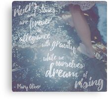 Dream of Rising Canvas Print