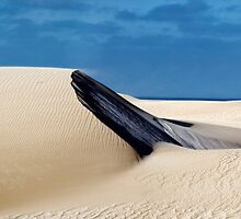 Dune at Fowlers Bay, South Australia.  by Alex Fricke