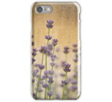 Field of Lavender iPhone Case/Skin