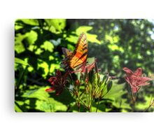Monarch Butterfly at Blue Springs HDR by LarcenIII Metal Print
