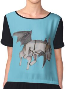 If Pigs Could Fly  Chiffon Top