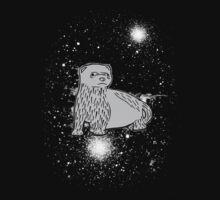 Space Ferret Kids Clothes