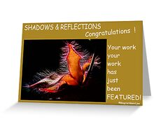 SUBMISSION FEATURE BANNER - SHADOWS & REFLECTIONS Greeting Card