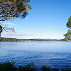 Wallaga Lake (panoramic) by rom01