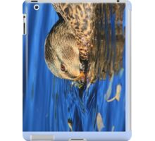 Female mallard on Llangollen Canal iPad Case/Skin