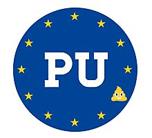 PU to the EU Photographic Print