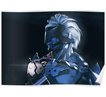 Raiden Is Back Poster