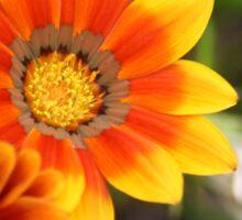 Happy Orange Flower Sticker