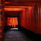 Senbon Torii - Fushimi Inari Shrine by Perggals© - Stacey Turner