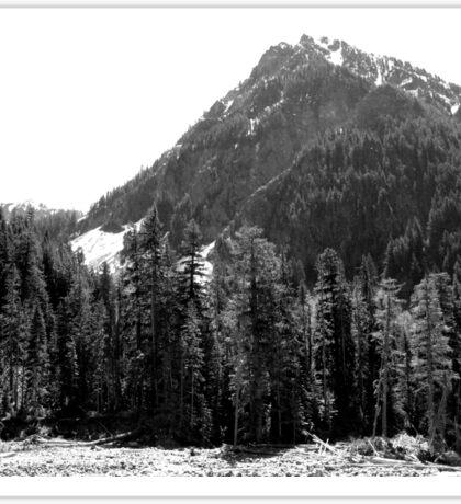 Mount Rainier, Washington USA (B&W) Sticker
