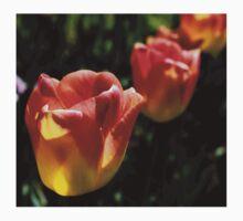 tulips 3 Baby Tee