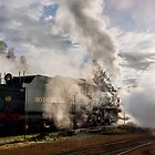 Steaming by robcaddy