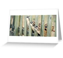 Group of deer outside during the day Greeting Card