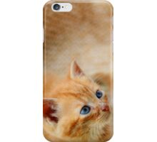 Curious kittens iPhone Case/Skin