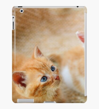 Curious kittens iPad Case/Skin