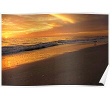 Beach sunset and Sand Piper Poster
