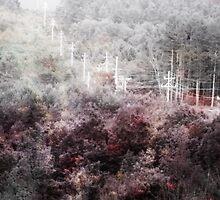 Fractured Landscape III by gjameswyrick