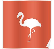 Flamingo Orange Poster