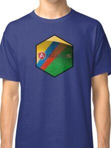 angularjs programming language hexagonal hexagon sticker Classic T-Shirt