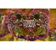 Like a Flower Photographic Print