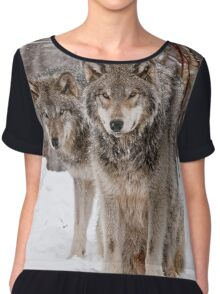 Timber Wolf Pair Women's Chiffon Top