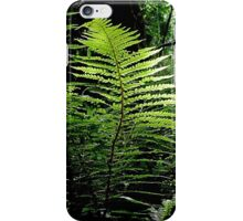 Green, Green, It's Green They Say On The Far Side of The Hill iPhone Case/Skin
