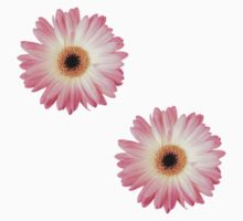 Pink Daisies by wishforlondon