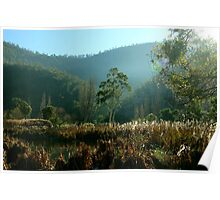Tynwald Morning In Autumn Poster