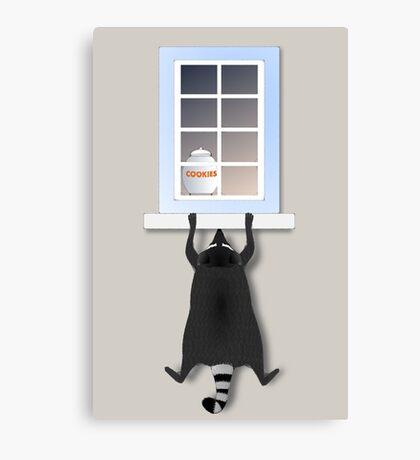 Cheeky racoon Canvas Print