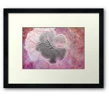 Fossil Flower Framed Print