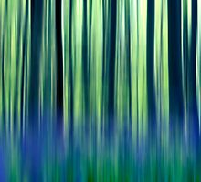 abstract forest  by jessicahyde