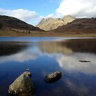 Blea Tarn, Lake District National Park, UK by GeorgeOne